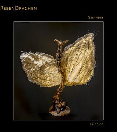 REBENDRACHE_GELANDET